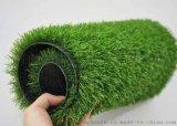 河南人造草坪生产厂家工程草坪厂家直供