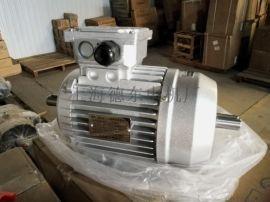 德东洗车机电机订做YS6334 0.25KW铝壳