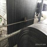 塑料编织布200克-40kN/m优惠报价