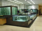 深圳海鲜池图片、玻璃海鲜池订做