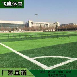 山东厂家供应学校足球场专用人造草坪 休闲草皮