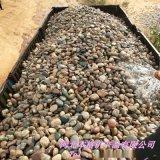 鹅卵石参加供应 造景鹅卵石  园林装饰鹅卵石