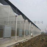 山東濰坊陽光板溫室專家建設陽光板玻璃溫室建設工程