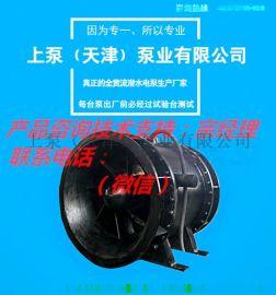双向流道全贯流潜水电泵