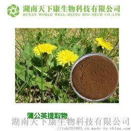 蒲公英提取物 黄酮5% 饲料添加剂 生产厂家