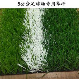 足球场跑道仿真草坪5公分足球草