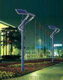 四川室外景觀燈丶成都公園燈丶綿陽廣場燈