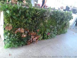 广州圣杰仿真植物墙,假绿植墙,草皮墙,工厂直销