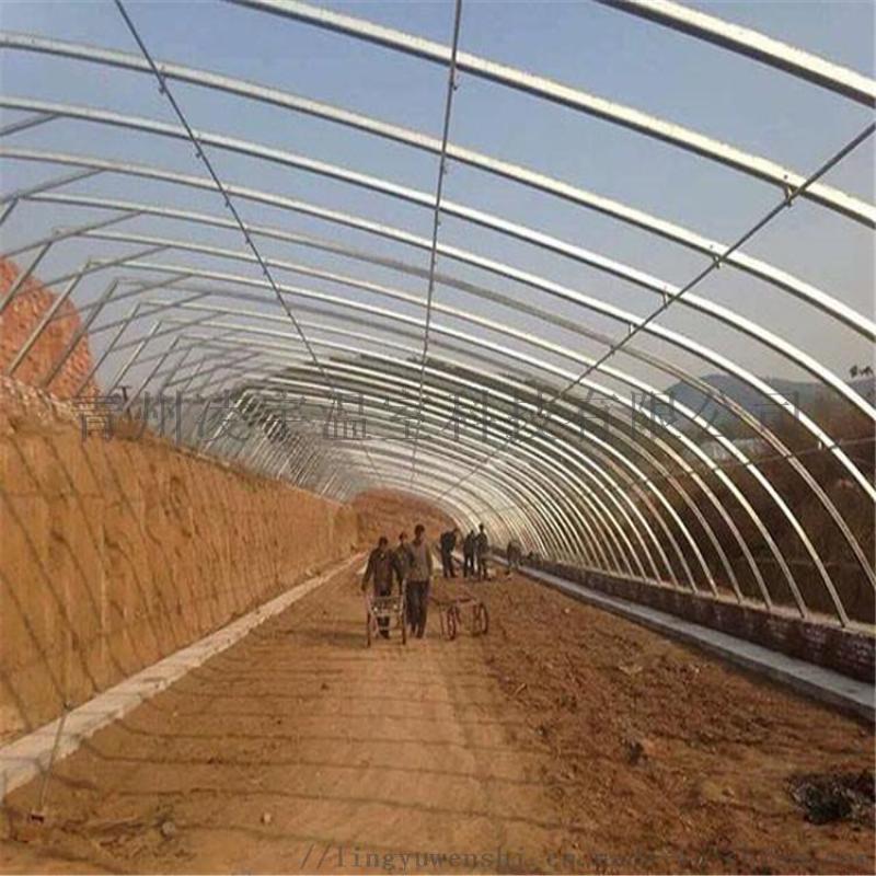 現代化日光溫室建設工程日光薄膜溫室設計