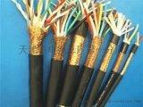電子計算機用電纜ZR-DJFPFRP
