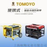 大澤動力9kw開架汽油發電機TO10000ET