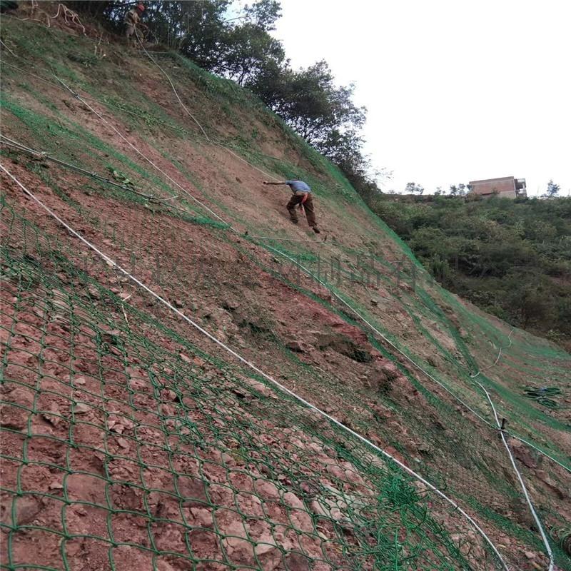 道路路基边坡防护.路基边坡防护网.道路边坡防护网厂