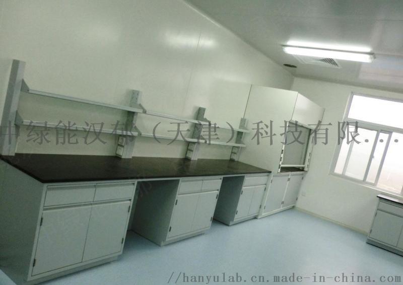 中绿能汉郁药厂实验室工程承建
