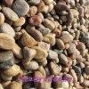 鹅卵石滤料厂家 地坪鹅卵石 红色鹅卵石 灰色鹅卵石