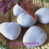 延安厂家鹅卵石白石子白色鹅卵石 园林绿化白色小石头
