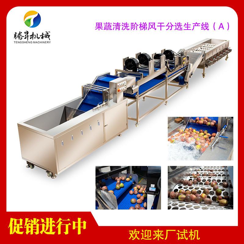 果蔬风干分选生产线(A)