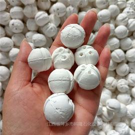 科隆填料分享带槽开孔瓷球和菠萝瓷球特点