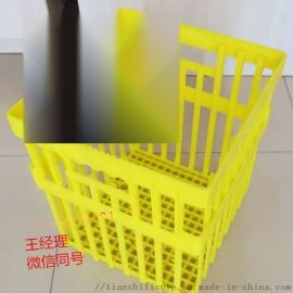 塑料大种蛋箱 种蛋周转箱 禽蛋专用箱