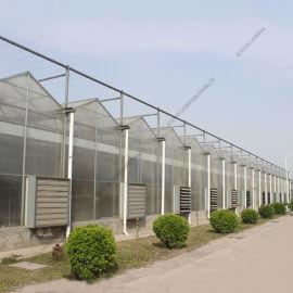绿色生态农业 景观山水 PC阳光板温室