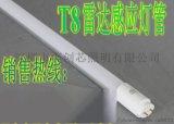 led感應燈_ led地下車庫燈