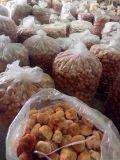 福建特产猴头菇干货食用菌礼包_图片厂家批发价格