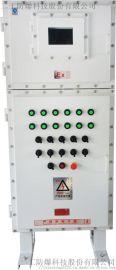 防爆配电箱安装环境。。。