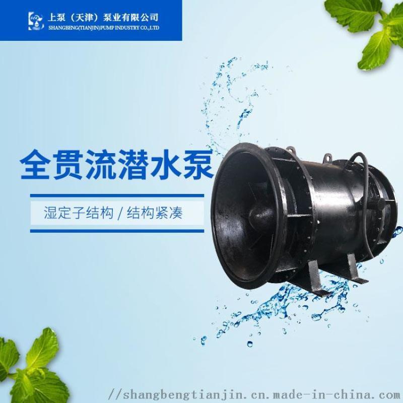 QGLN全貫流廠家 溼定子結構貫流泵