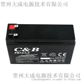 12V5AH免维护铅酸蓄电瓶 拉杆音响 卷闸门电梯