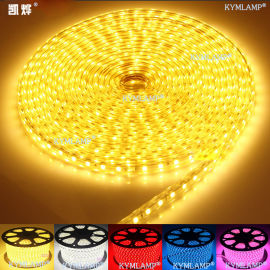 七彩灯带效果图5050高压LED灯带厂家直销