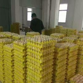 鸡蛋塑料托30枚塑料鸡蛋托尺寸**塑料蛋托