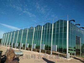 玻璃大棚建设,玻璃连栋温室温室,智能玻璃温室建设