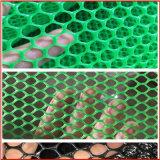 廣西腳踏網廠家 紫菜養殖網 南寧塑膠需求網