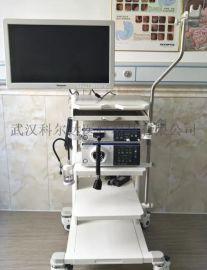 奥林巴斯CV-170电子胃肠镜系统原装进口胃肠镜
