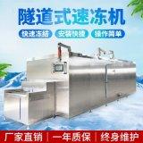 成盤大蝦隧道速凍機 大蝦裹凍連續生產線