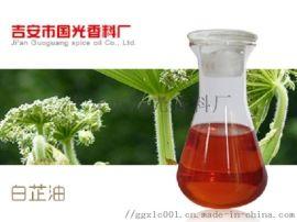 供应白芷油 植物提取白芷精油 厂家现货
