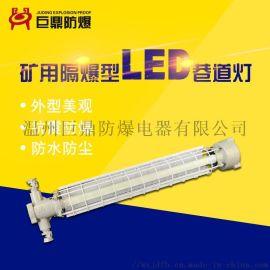 巨鼎DGS24/127L 长型LED巷道灯