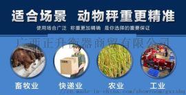 灵山工业小型地磅秤5T秤猪牛羊地磅电子秤带围栏