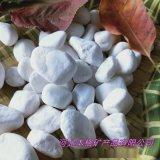 厂家直销鹅卵石白色 机制水洗石 枯山水造景白石子