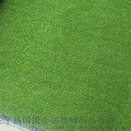 假草坪  人工草坪图片  **仿真草坪