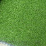 假草坪  人工草坪圖片  優質模擬草坪