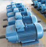 YZR三相异步电动机 绕线转子电动机 国标全铜电机