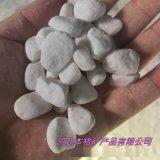 黄石供应白色鹅卵石 白色砾石 水洗石 白色洗米石