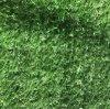 渭南哪裏有賣人造草坪圍牆草坪137,72120237