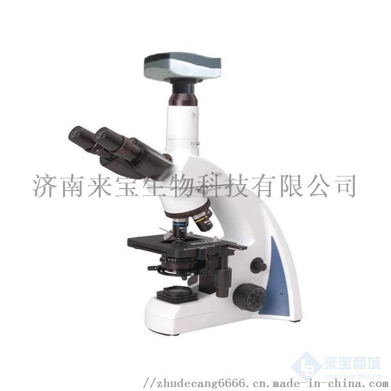 N-300M三目生物显微镜