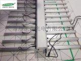 凯森led植物灯500w组合调光植物灯室内补光灯