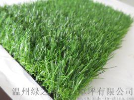 绿之洲2307-25mm人造草坪