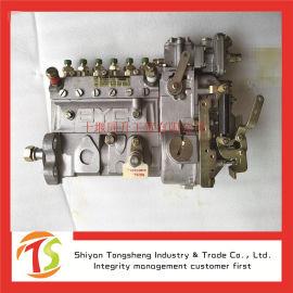 康明斯发动机油泵ISLE高压油泵 龙工旋挖钻配件