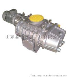 结构简单紧凑罗茨真空泵SR-T200**节能