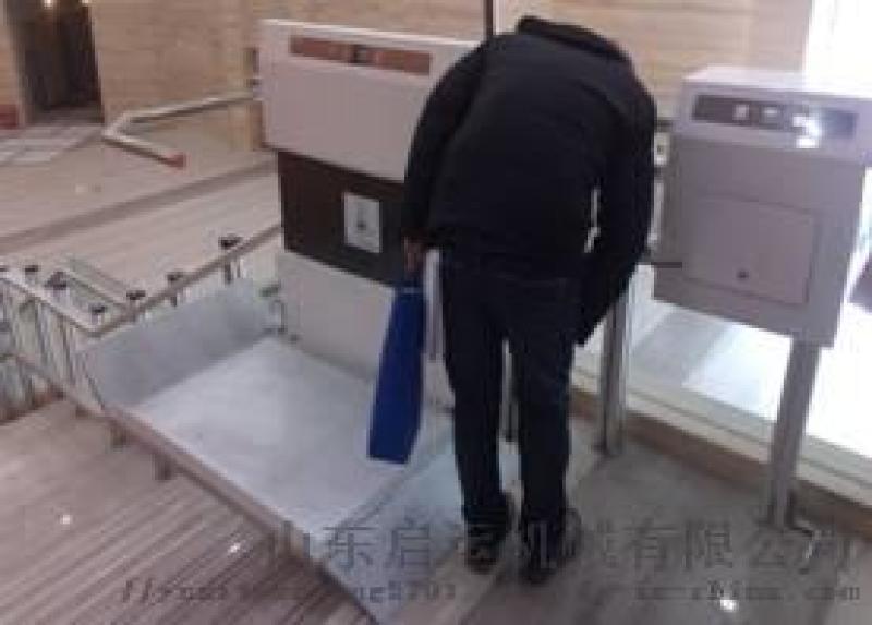 新鄉市銷售輪椅電梯家庭升降機樓梯自動爬樓機