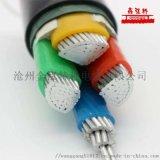 YJLV22交聯聚乙烯鋁芯絕緣電力電纜